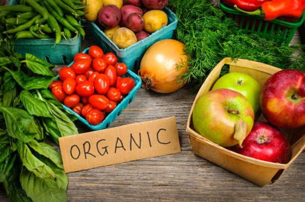 EU-auditors-to-scrutinise-organic-food-supply-chain_wrbm_large